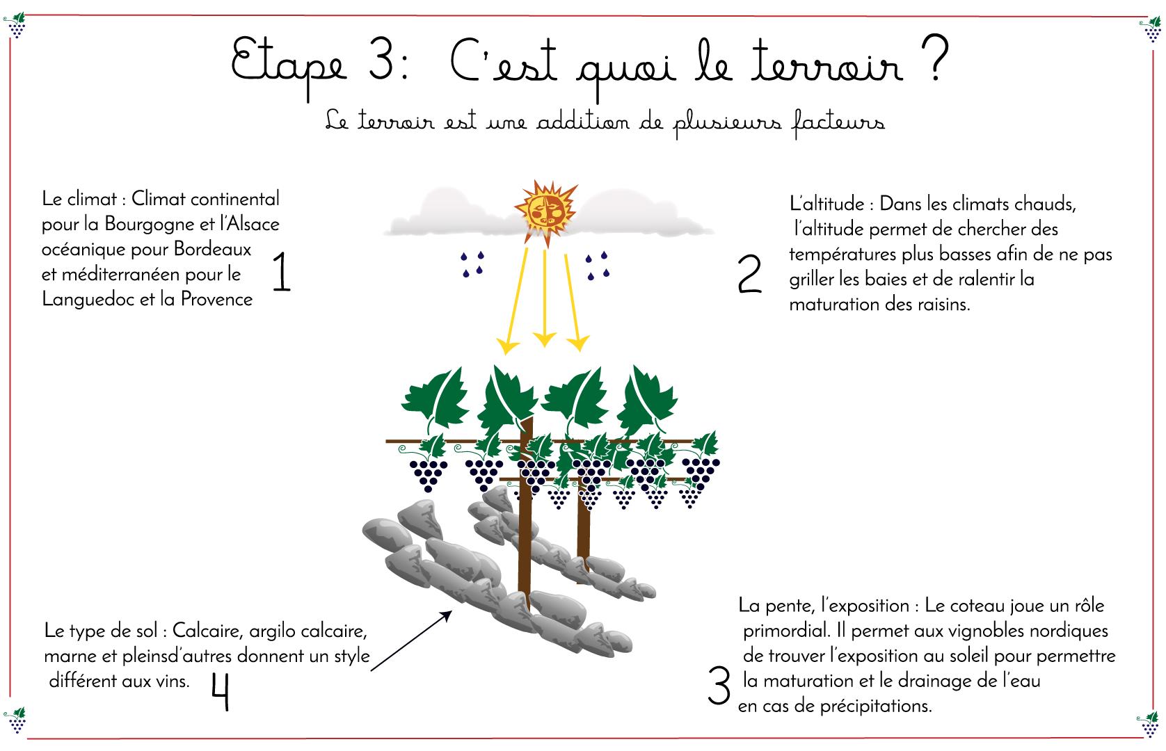 Infographie sur le terroir by ni bu ni connu