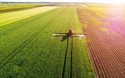 Les pesticides pour les nuls !